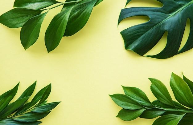 Grünblätter auf gelbem grund