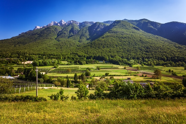 Grüne alpine landschaft in trento