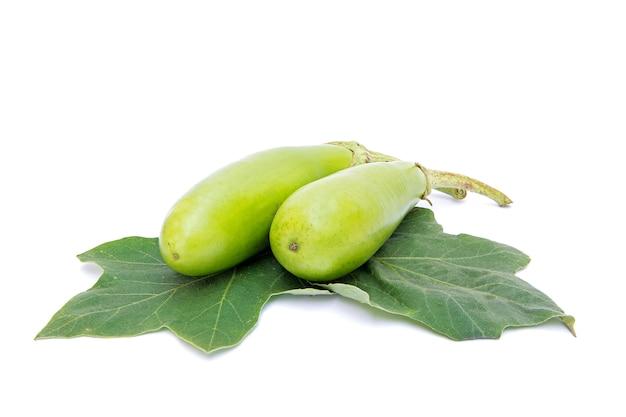 Grüne auberginenblätter