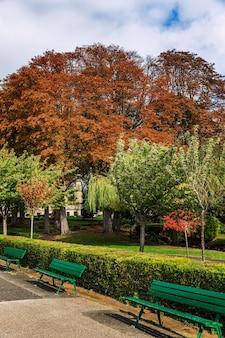Grüne bänke in einem hellen herbstpark in paris