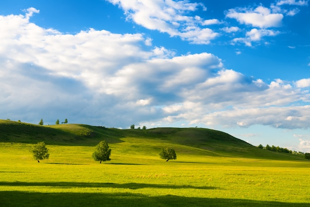 Grüne bäume auf dem hügel und der blaue himmel mit wolken. schöne sommerlandschaft.
