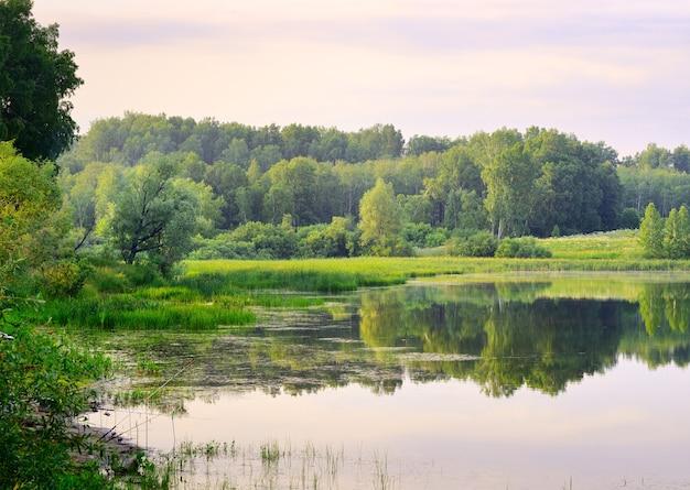 Grüne bäume im sommer spiegeln sich in der ruhigen oberfläche des sees