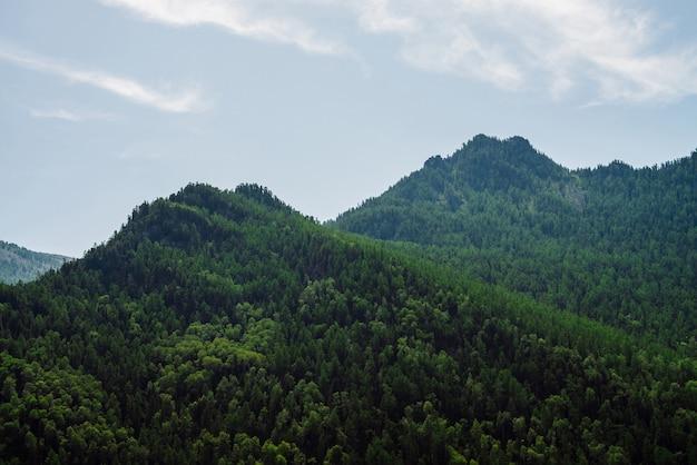 Grüne bergspitze unter klarem blauem himmel.