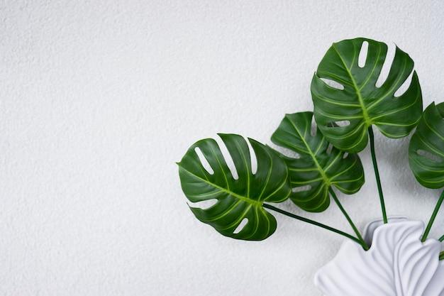 Grüne blätter der monstera-pflanze schmücken das innere einer modernen wohnung