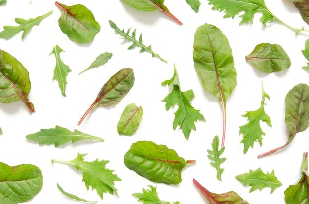 Grüne blätter der salatmischung auf weißem hintergrund.