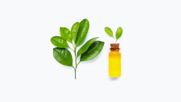 Grüne blätter mit ätherischem zitrusfruchtöl