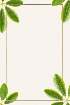 Grüne blätter mit goldenem rechteckrahmen