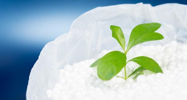 Grüne blätterpflanze, die auf polystyrolschaumperle in plastiktüte mit lebendigem blau mit kopienraum wächst, umweltfreundliches konzept
