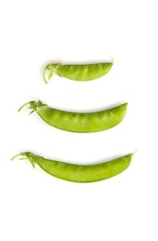 Grüne bohne