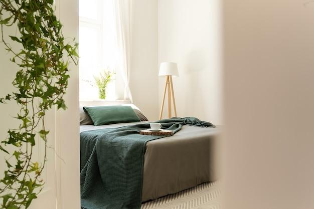 Grüne decke und kissen auf grauem bett im minimalen schlafzimmerinnenraum mit lampe und pflanzen. echtes foto