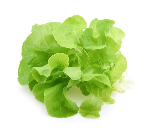 Grüne eichensalatblätter isoliert auf weißem hintergrund