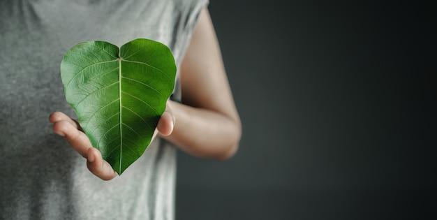 Grüne energie erneuerbare und nachhaltige ressourcen umwelt- und ökologie-pflegekonzept