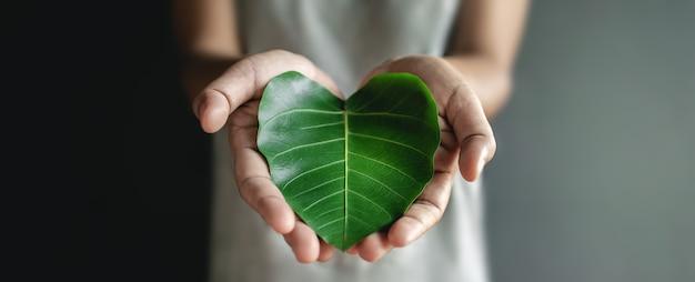 Grüne energie, z. b. erneuerbare und nachhaltige ressourcen, umwelt- und ökologie-pflegekonzept