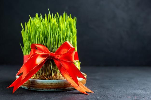 Grüne feiertags-samen der vorderansicht mit roter schleife auf dunkler oberfläche