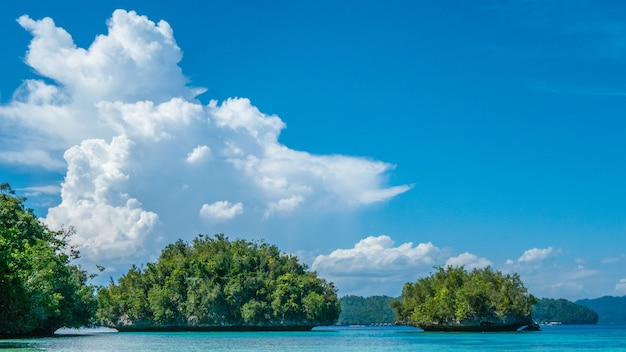 Grüne felsen nahe batu lima, biodiversitätsresort auf gam island, doberai eco resort, insel urai, west papuan, raja ampat, indonesien.