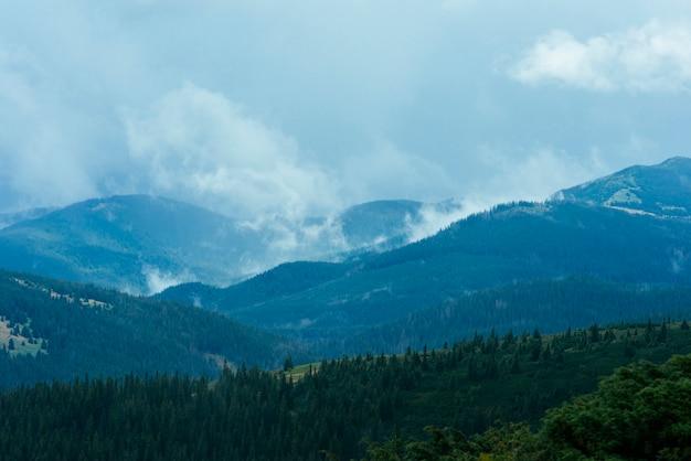 Grüne gebirgswaldlandschaft