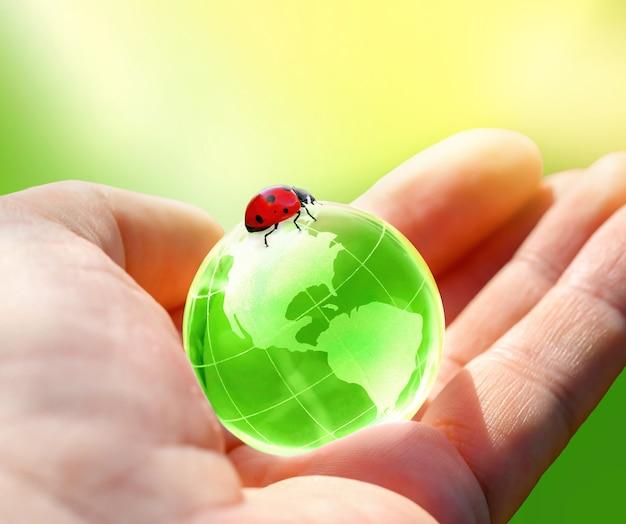 Grüne glaskugel des planeten erde und marienkäfer in menschlicher hand