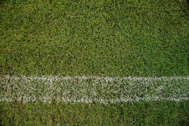 Grüne hartplatzbeschaffenheit des paddeltennisses mit weißer linie kann als fußball- oder badmintonhintergrund benutzt werden
