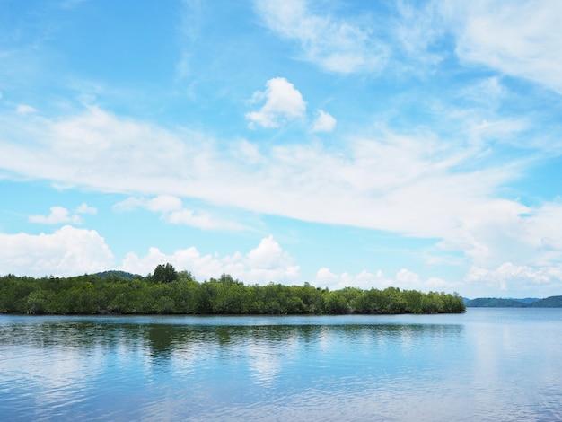 Grüne küste und blauer himmel auf tropischer insel