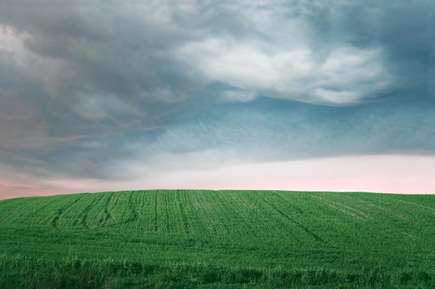 Grüne landwirtschaftlichen bereich
