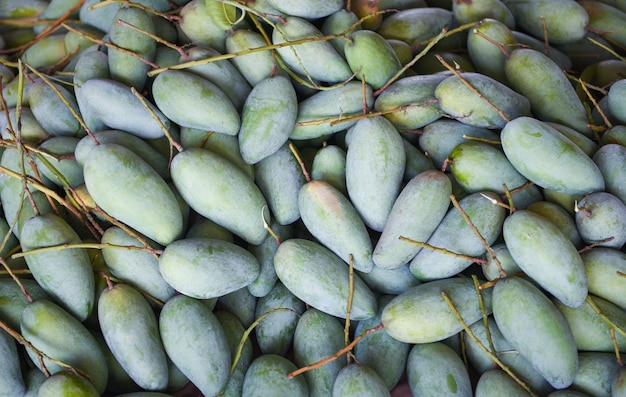 Grüne mango zum verkauf auf dem obstmarkt in thailand. frische rohe mangobeschaffenheitshintergrundernte von baumlandwirtschaft asiatisch