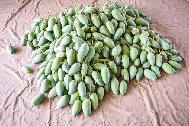 Grüne mango zum verkauf auf dem obstmarkt in thailand - frische rohe mangoernte aus der asiatischen baumzucht
