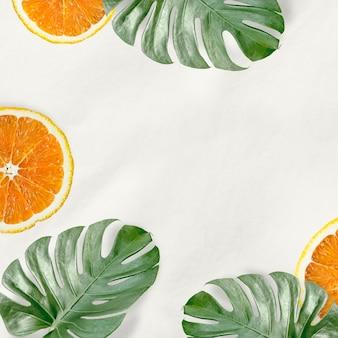 Grüne monstera-blätter und orangefarbener hintergrund