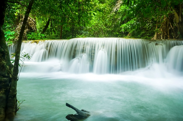 Grüne natur mit grüner wasserfalllandschaft