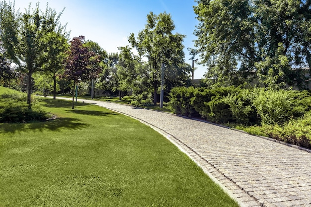 Grüne parklandschaft mit gepflegtem rasen und befestigtem weg am sommertag