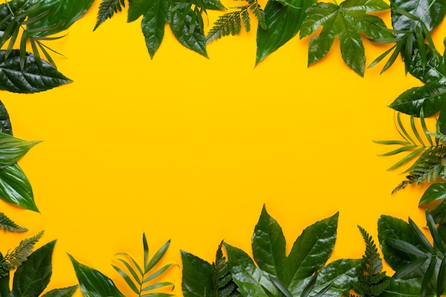 Grüne pflanzenblätter auf gelbem hintergrund. retro-vintage-stil.