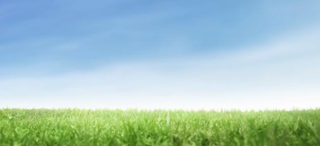Grüne rasenfläche mit blauem himmel und naturlandschaftshintergrund