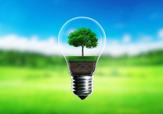 Grüne sämlinge in einem alternativen energiekonzept der glühbirne