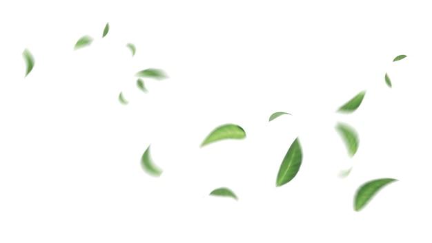 Grüne schwimmende blätter fliegende blätter grünes blatt tanzen, luftreiniger-atmosphäre einfaches hauptbild