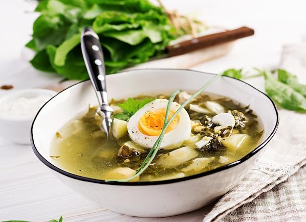 Grüne suppe des sauerampfers in der weißen schüssel.