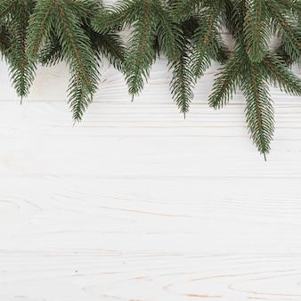 Grüne tannenbaumaste auf tabelle