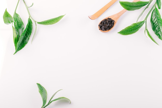 Grüne teeblätter auf weißem tisch