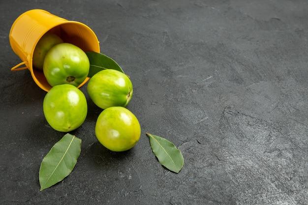 Grüne tomaten lorbeerblätter der unteren ansicht und umgekippter gelber eimer auf dunklem hintergrund