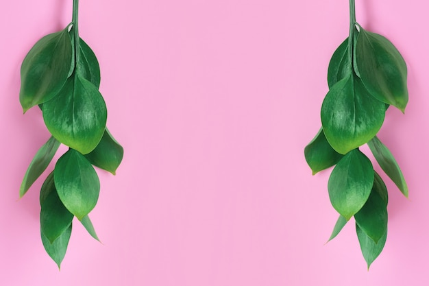 Grüne tropische blätter auf einem rosa hintergrund