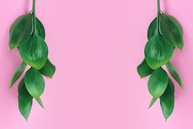 Grüne tropische blätter auf einem rosa. stilvolle modische minimale natur