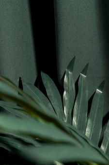 Grüne tropische pflanze hautnah