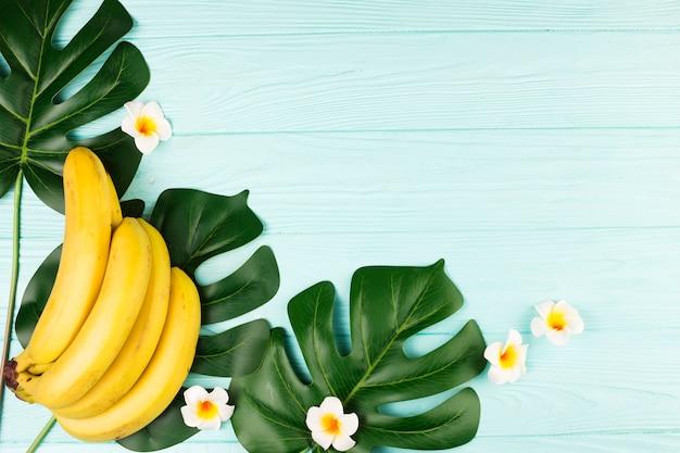 Grüne tropische pflanzenblätter und bananen