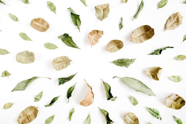 Grüne und braune blätter liegen flach