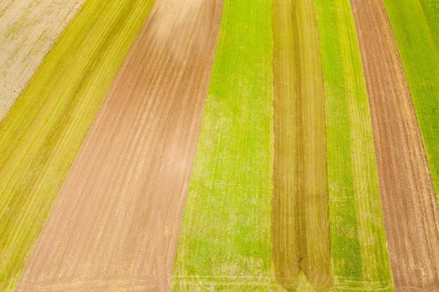 Grüne und gelbe farben des geernteten feldes - gut für den hintergrund