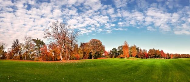 Grüne wiese im herbstpark, bäume mit buntem laub, panorama. wald mit roten blättern, naturlandschaft im sonnigen tag, panoramablick