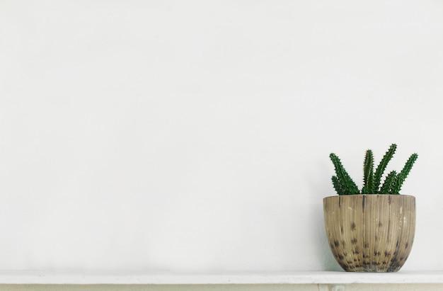 Grüner baum auf einem weißen hintergrund