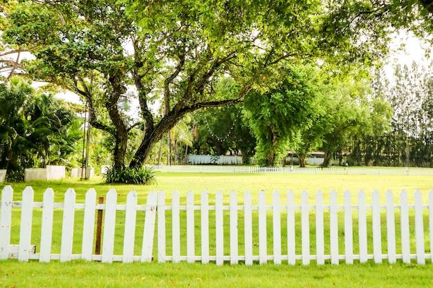 Grüner baum und grünes gras im gartenholzzaun