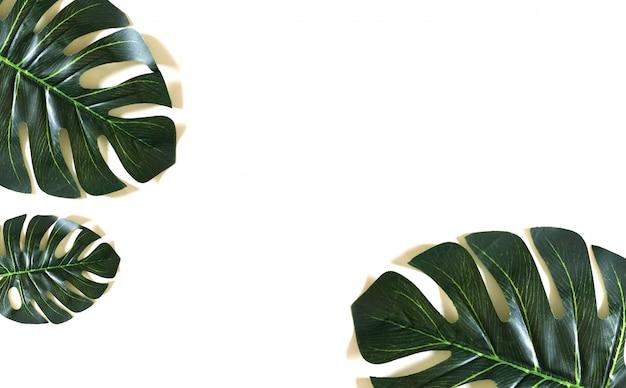 Grüner blattmusterhintergrund. flachgelegt, naturbelassen