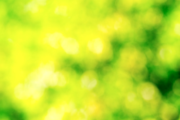Grüner bokeh abstrakter heller hintergrund