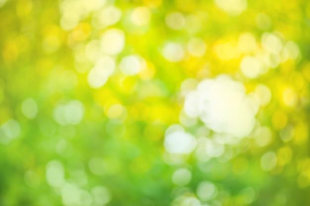 Grüner bokeh hintergrund. defocused abstrakter grüner hintergrund.