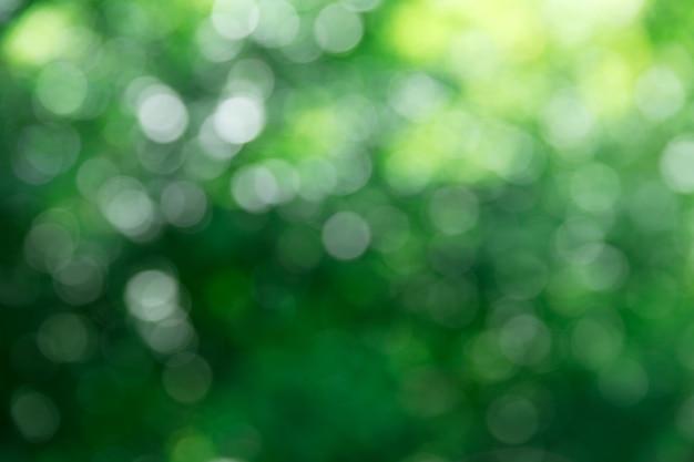 Grüner bokeh-hintergrund und sonnenlicht
